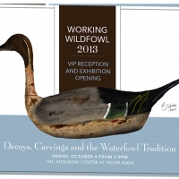Audubon Working Wildfowl Invitation